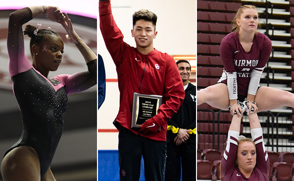 Collegiate gymnastics weekly recap - Feb. 13-17, 2019