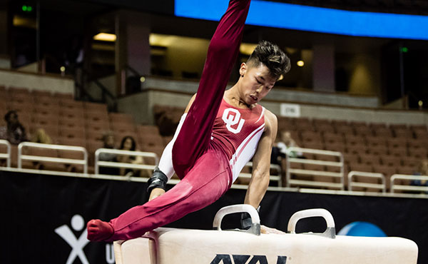 Moldauer leads senior men's all-around rankings at 2017 P&G Gymnastics Championships